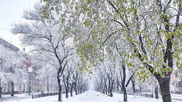 """Первое место - """"апрельский снег"""" - Роман Сарапин"""