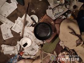 Убил пенсионерку чугунной сковородкой | Прихист