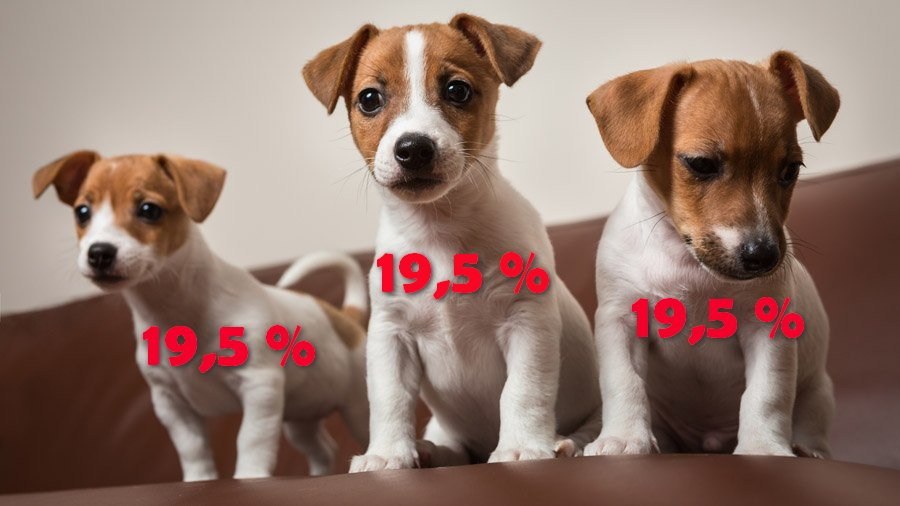 Продал собаку – заплати налог: новшества налоговой реформы 2020 | Прихист