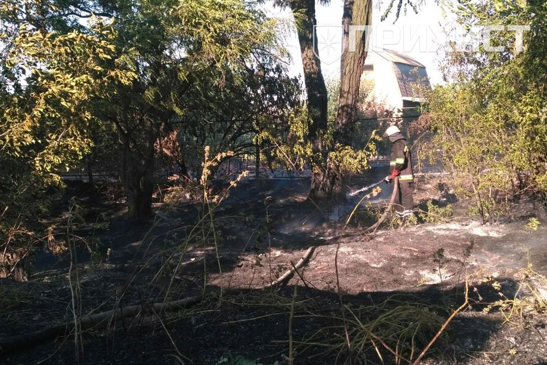 За сутки в области зарегистрированно 58 пожаров в экосистемах | Прихист