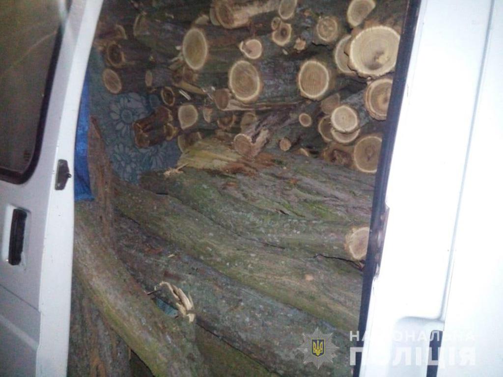 В Никопольском районе полицейские разоблачили двух мужчин, которые занимались незаконной вырубкой деревьев | Прихист