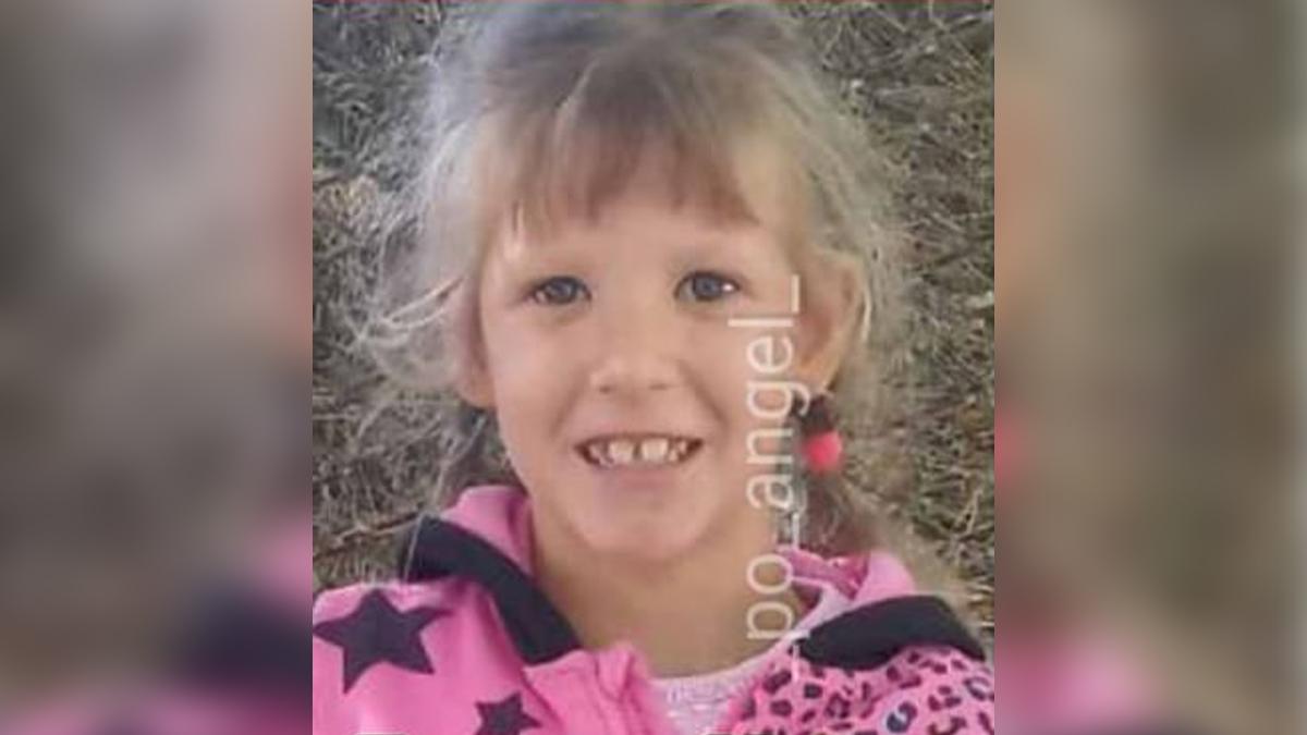 Поліція Херсонщини розповіла подробиці про підозрюваного у вбивстві дівчинки | Прихист