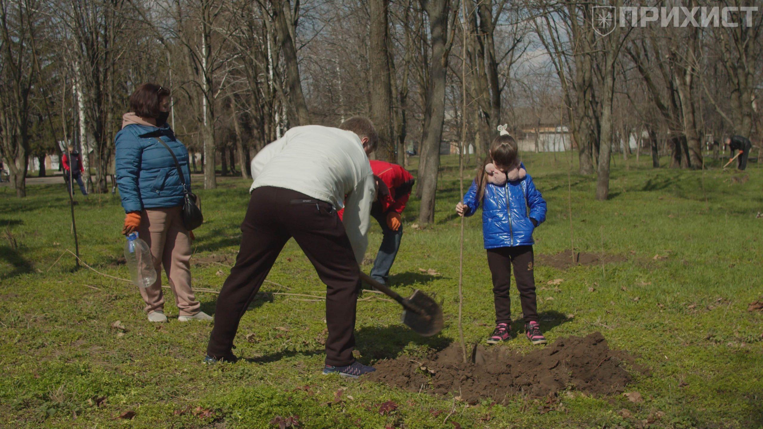 Интерпайп Нико Тьюб посадил 100 кленов в никопольском парке «Металлургов»   Прихист