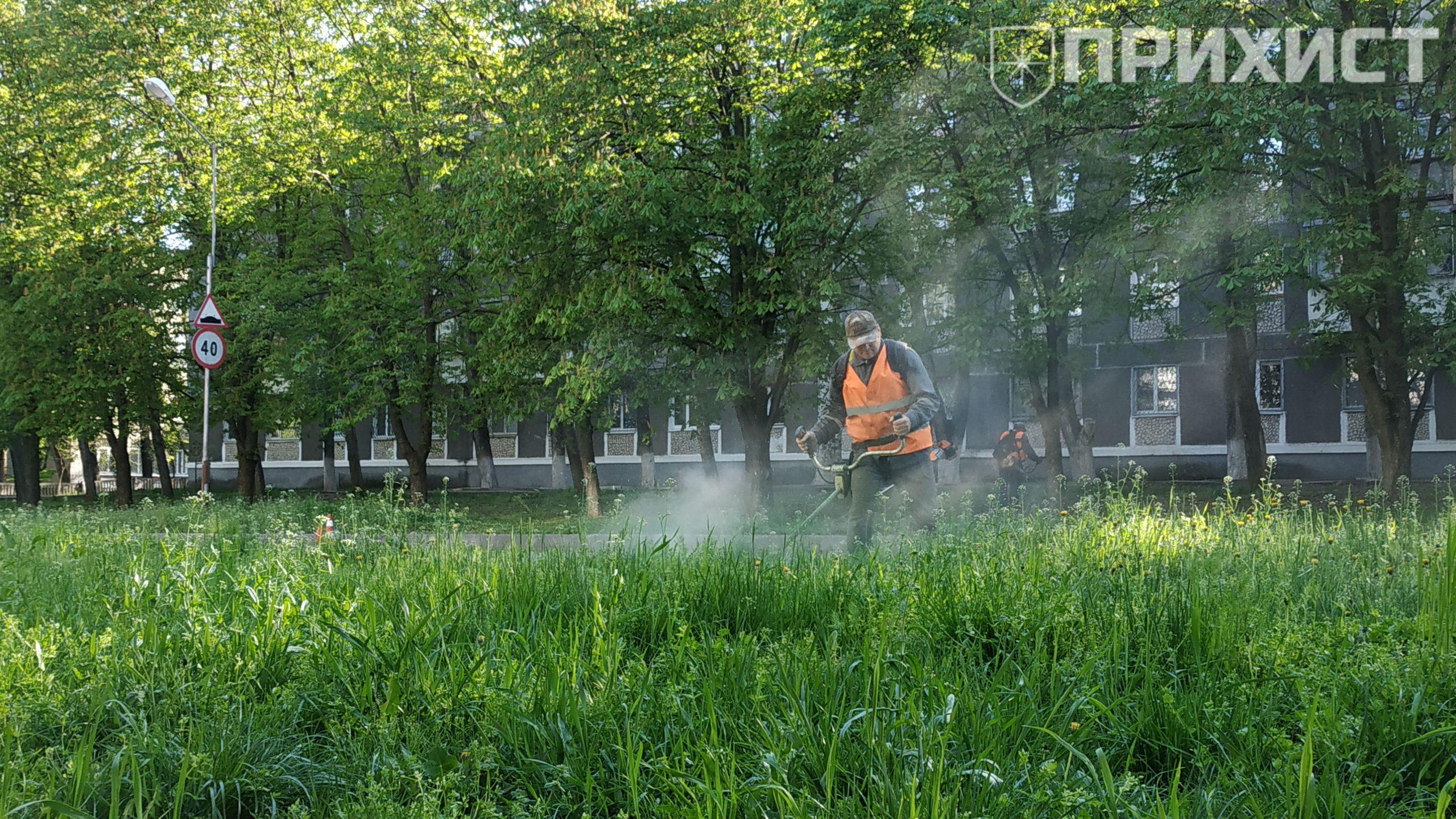 В Никополе на ул. Шевченко начали косить поросшую траву   Прихист